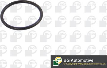 BGA AG0670 - Gasket, vacuum pump uk-carparts.co.uk