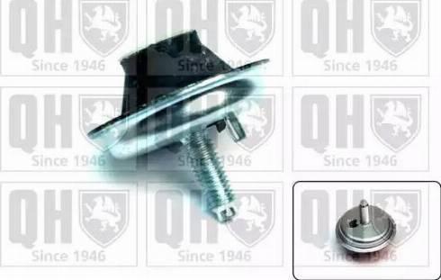 Quinton Hazell EM4144 - Holder, engine mounting uk-carparts.co.uk