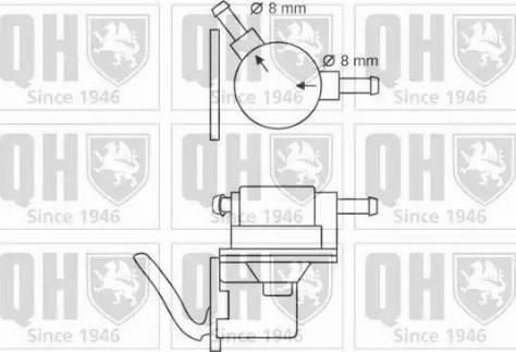 Quinton Hazell QFP119 - Fuel Pump uk-carparts.co.uk